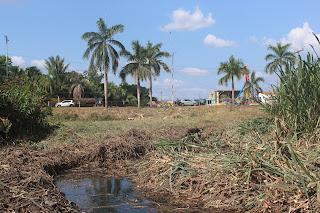 Para evitar alagamentos a Prefeitura de Bom Jardim inicia limpeza de vias de escoamentos em lagoas que cortam o centro da cidade.