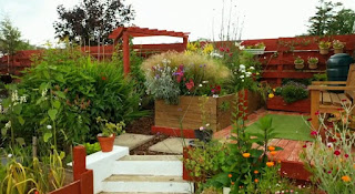 Cara Daly garden