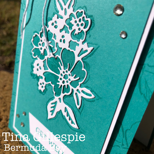 scissorspapercard, Stampin' Up!, Colour Creations, Hannes-Penned Petals, Blossoms In Bloom, Penned Flowers Dies