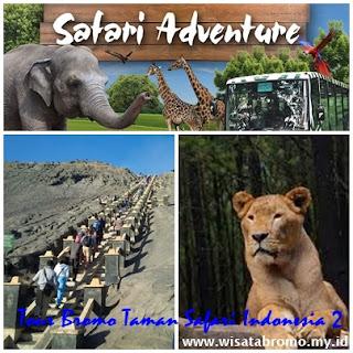 http://www.wisatabromo.my.id/2016/03/paket-wisata-bromo-taman-safari-2-hari.html