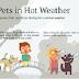 Πώς φροντίζουμε τον σκύλο στην ζέστη...