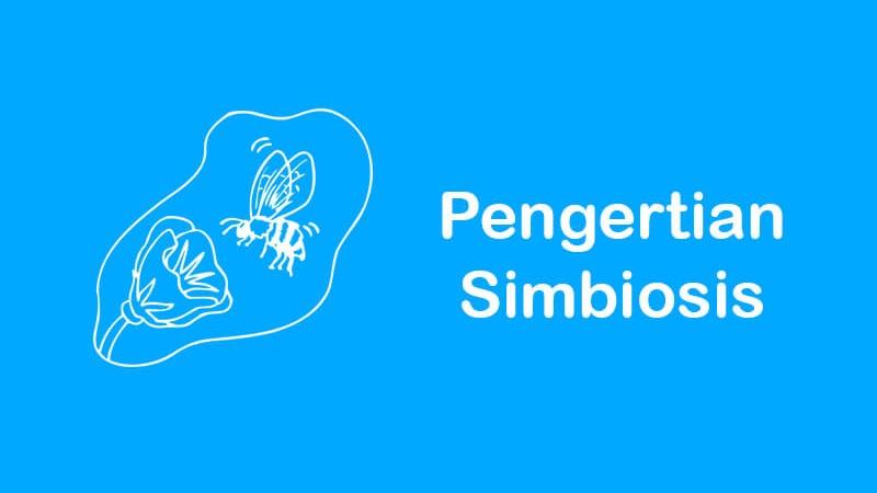 pengertian simbiosis beserta jenis dan contohnya