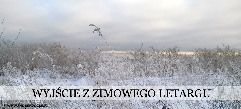 Zimowy letarg - depresja sezonowa