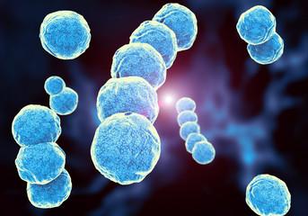 كيفية تعقيم الأطعمة للوقاية من فيروس كورونا