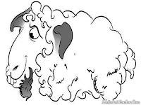 Mewarnai Gambar Kambing Domba