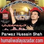 http://www.humaliwalayazadar.com/2017/10/syed-parwaz-hussain-shah-nohay-2018.html