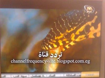 التردد الجديد لقناة مجان العمانية على نايل سات 2017,2018