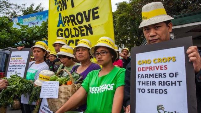 """109 nobeles acusan a Greenpeace de """"crimen contra la humanidad"""" por los transgénicos"""