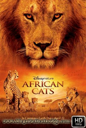 Felinos De Africa [1080p] [Latino-Ingles] [MEGA]