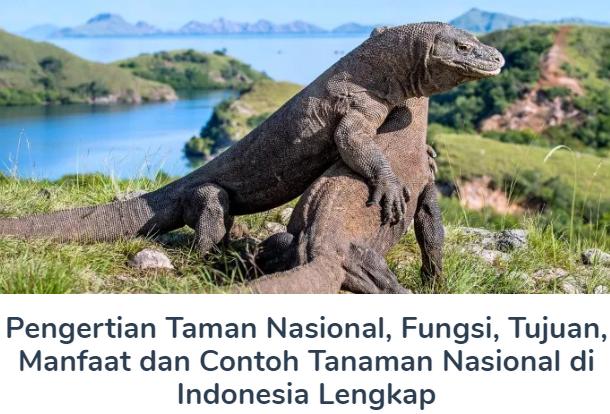 Materi Pengertian Taman Nasional Beserta Fungsi, Tujuan, Manfaat dan Contoh Tanaman Nasional di Indonesia Terlengkap