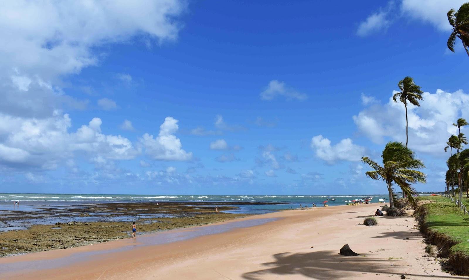 Passeio de Salvador a Praia do Forte e Guarajuba