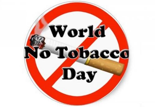 kata bijak hari tanpa tembakau sedunia dalam bahasa inggris dan