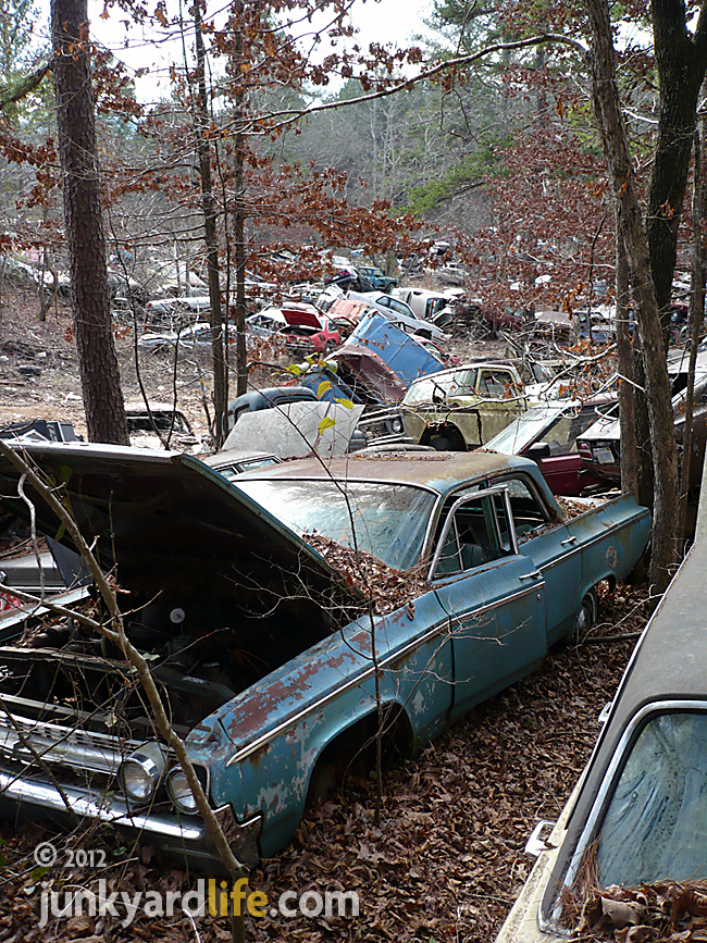 Dodge Heaven Salvage Yard : dodge, heaven, salvage, Junkyard, Life:, Classic, Cars,, Muscle, Finds,, News:, Tour:, Gibbs, Salvage, Ridgeville,, Alabama, Family-owned, Years