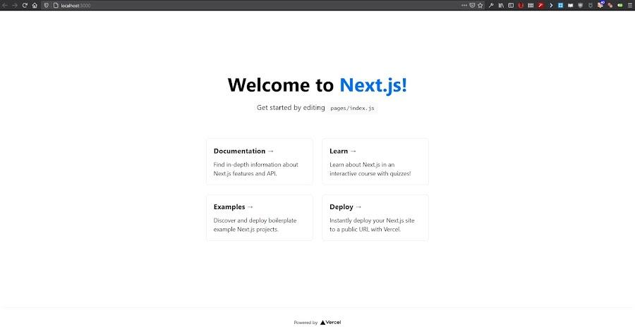 Halaman Starter Next.js
