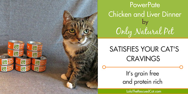 only natural pet|chewy influencer|powerpate