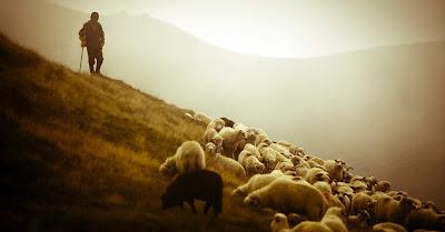 ilton santana submissão pastores