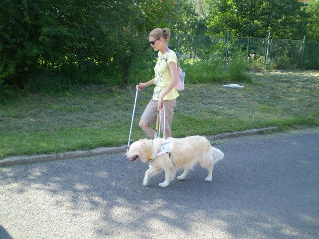 Linda s bílou holí  a Cilka v postroji jdou po silnici