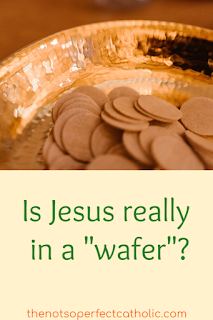 "Picture of communal hosts in a paten with the text Is Jesus really in a ""wafer""? below the picture"