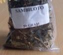 tumbuhan obat tradisional herbal sambiloto kering