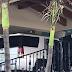 Persecución y ataque a balazos en Boca del Río, Veracruz