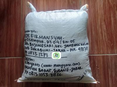 Benih Padi Pesanan   DEDE FIRMANSYAH Sukabumi, Jabar.    (Setelah di Packing).