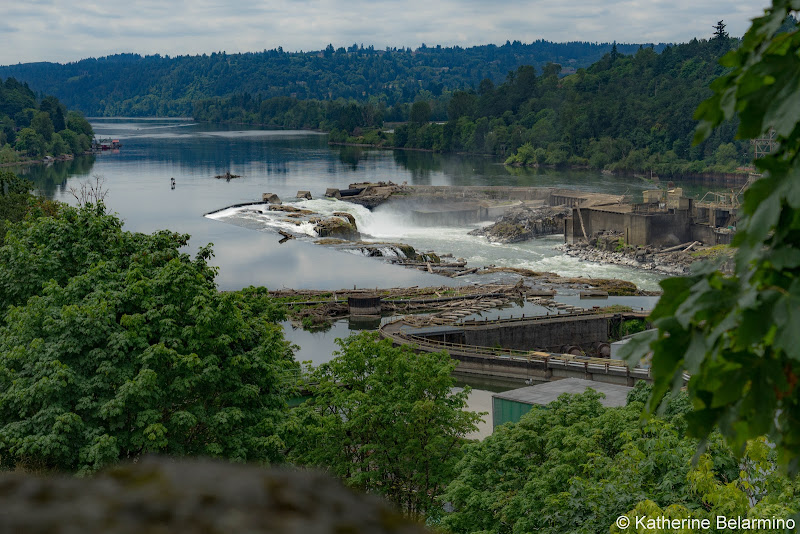 Willamette Falls from McLoughlin Promenade Things to Do In Oregon City and Mt. Hood Territory