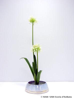 Ikebana-shoka-shofutai-wago-escola-wabi-sabi