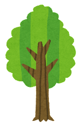木の成長過程のイラスト7