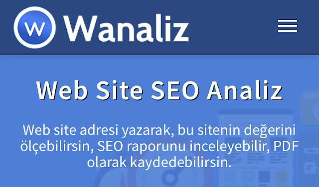 Kaliteli SEO Analiz Sitesi: Wanaliz