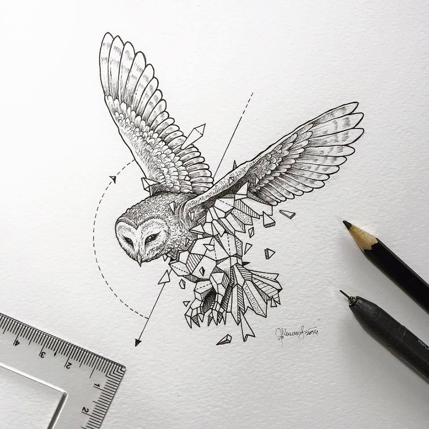 09-Owl-Kerby-Rosanes-Geometry-Coupled-with-Detailed-Drawings-of-Animals-www-designstack-co