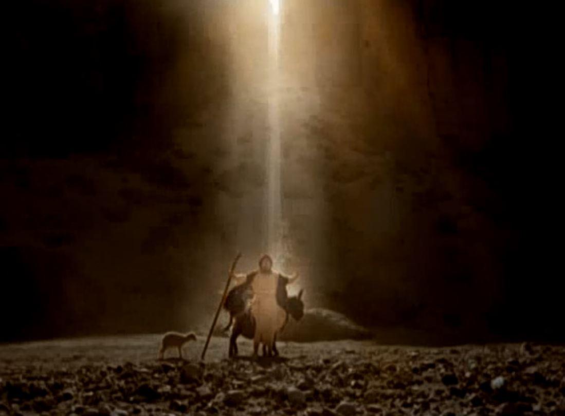 La Terre Promise Film Martin Landau