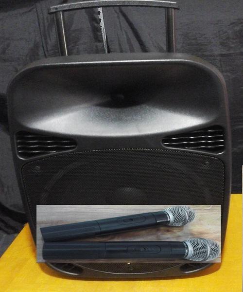Sewa Speaker Portable dan Rental Mic Wireless di Tanjung Barat Jakarta Selatan