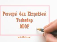 Persepsi dan Ekspektasi Terhadap ODOP