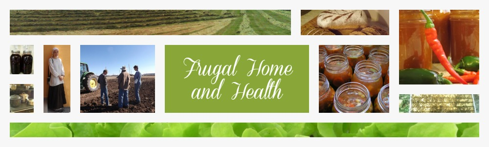 Frugal Home and Health