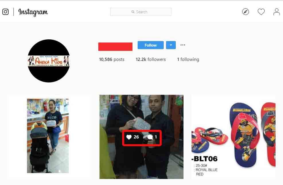 Contoh akun followers fake