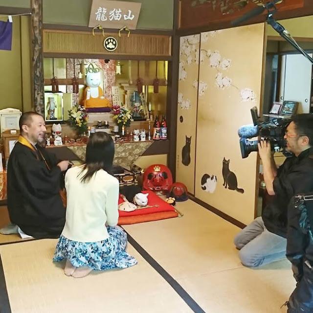 """Trong một cuộc phỏng vấn với chủ sở hữu, trang Bored Panda được cho biết rằng có 7 con mèo đang sống và làm việc trong đền: Koyuki (là cái, trụ trì), ba mèo cái khác là Konatsu, Ren và Chicchi, còn lại là các mèo đực gồm Chin, Aruji và Waka. Khách đến Nyan Nyan Ji sẽ được phục vụ cà phê với những """"chú tiểu mèo"""" này."""