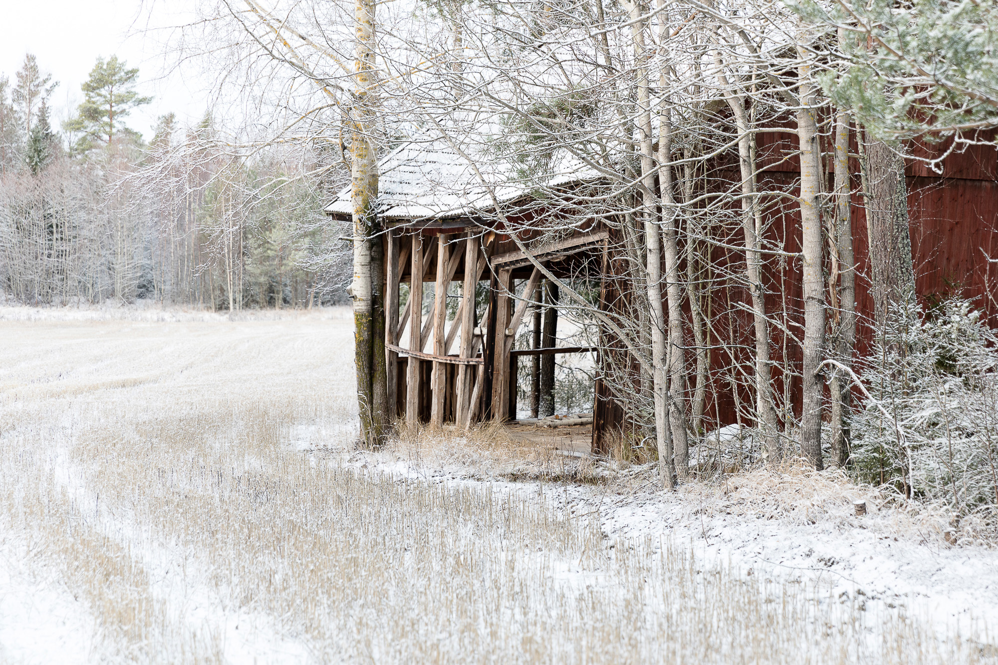 talvi, uusivuosi, Pori, Visitpori, rakastu poriin, valokuvaaja, visualaddict, visualaddictfrida, photographer, Frida Steiner, Rauma