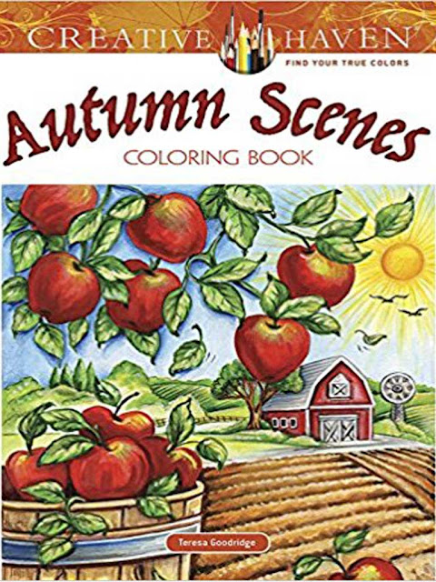 autumn scenes coloring book for adult