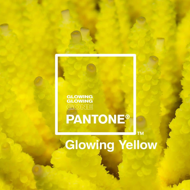 glowing-Pantone-Adobe-paleta-colores-inspirada-corales