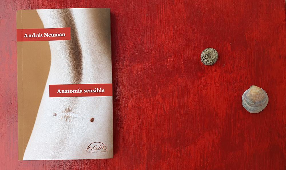 «Anatomía sensible» de Andrés Neuman (Páginas de Espuma)