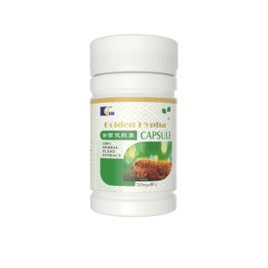 GOLDEN HYPHA / Immune Booster / 30 ₦5,784.00