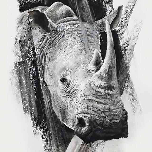 04-Rhino-Rhinoceros-Natalya-Bassani-www-designstack-co