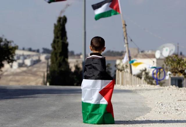 Palestine kids 50