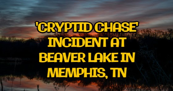 'Cryptid Chase' Incident at Beaver Lake in Memphis, Tennessee
