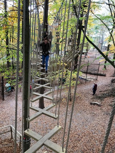 Go Ape at Temple Newsham Leeds - walking across a rope ladder