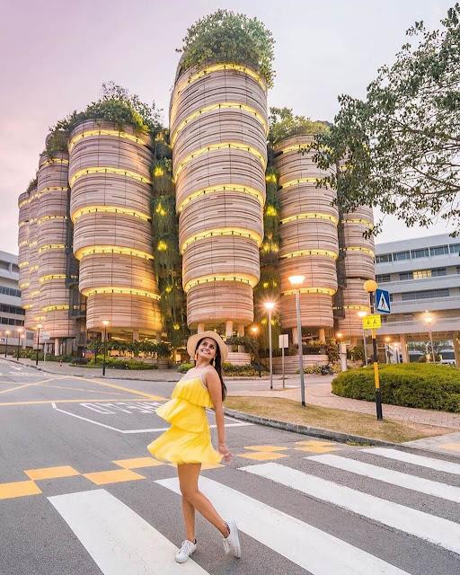 Khi đến tham quan The Hive, du khách có thể thoải mái chụp hình chẹck-in. Tuy nhiên, bạn nên chú ý giữ trật tự khi vào tham quan khuôn viên bên trong tòa nhà vì đây là khu vực tự học của sinh viên Đại học Công nghệ Nanyang. Khoảng thời gian lý tưởng nhất để ghé thăm nơi đây rơi vào khoảng từ 11-14h.