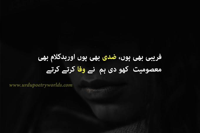 Faraybi Bhe Hun, Zidi Bhe Hun Ur Bad Kalam Bhe / urdu shayari