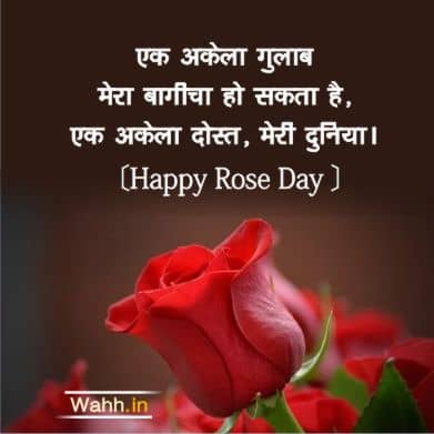 Happy Rose Day Facebook Quotes In Hindi