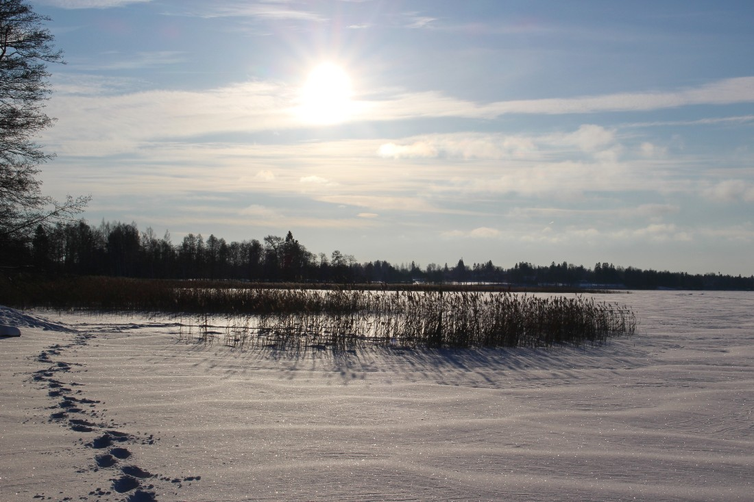 Tuusulanjärvi @rouvasana