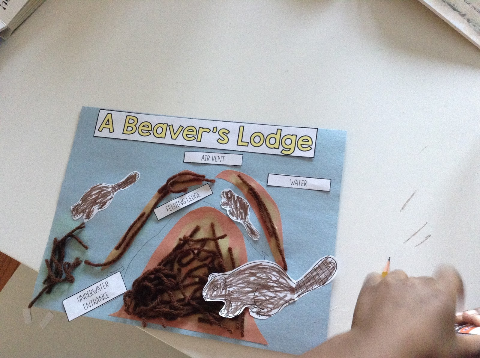 Teachermomplus3 Beaver S Lodge Craft